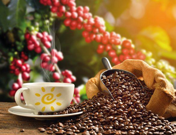 Café ganha nova roupagem e preparo diversificado vira tendência