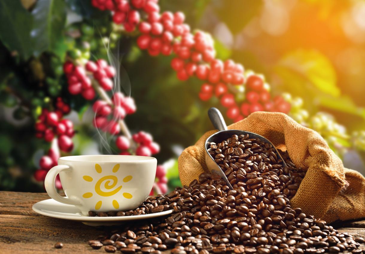 xícara de café com grãos caindo