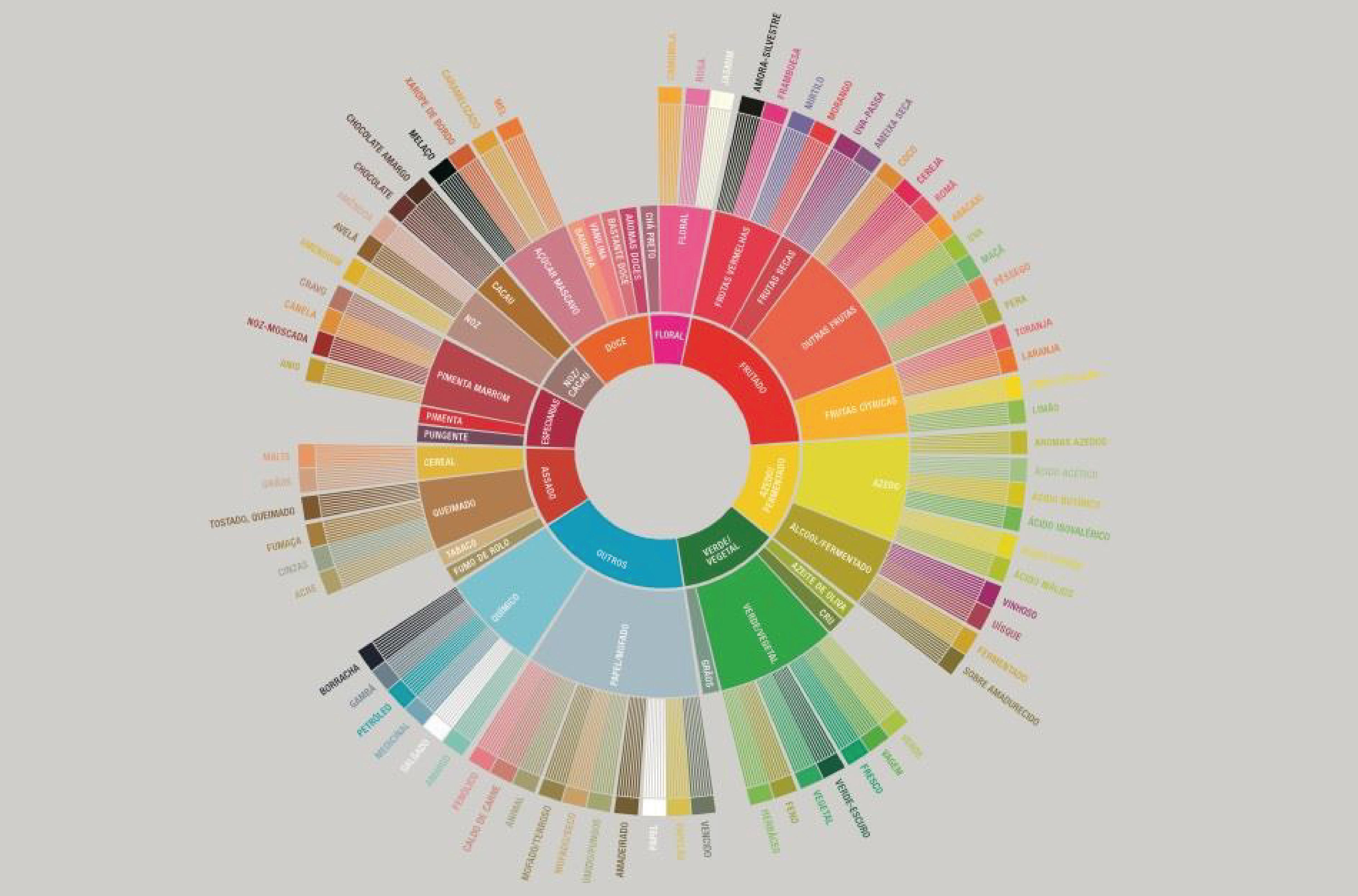 círculo colorido com sabores escritos